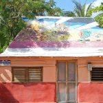 Estudia español, pinta un cuadro y baila en Puerto Morelos