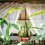 Los Colibries Mayan Jungle Spa